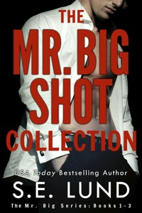 The Mr. Big Shot Collection - S. E. Lund pdf download