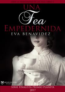 Una fea empedernida - Eva Benavidez pdf download