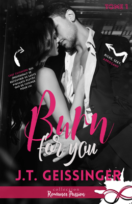 Burn for you - J.T. Geissinger pdf download