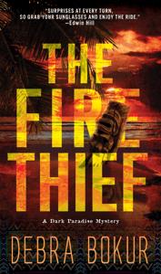 The Fire Thief - Debra Bokur pdf download