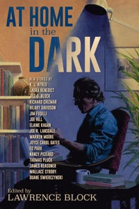 At Home in the Dark - Joe Hill, Nancy Pickard, Duane Swierczynski, Hilary Davidson, James Reasoner, Thomas Pluck, Wallace Stroby, Jill D. Block, Richard Chizmar, Elaine Kagan, Jim Fusilli, Warren Moore, Laura Benedict, N. J. Ayres, Joyce Carol Oates, Joe R. Lansdale & Ed Park pdf download