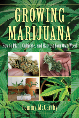 Growing Marijuana - Tommy McCarthy