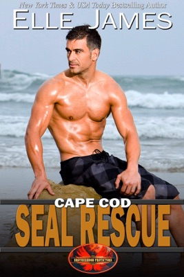 Cape Cod SEAL Rescue - Elle James pdf download