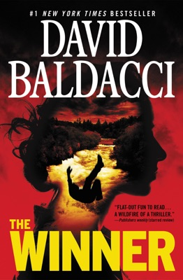 The Winner - David Baldacci pdf download