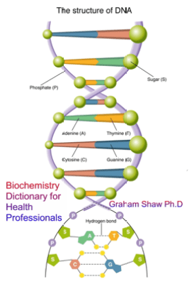 Biochemistry Dictionary for Health Professionals - Graham Shaw