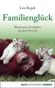 Familienglück - Lisa Rogak pdf download