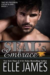 SEAL's Embrace - Elle James pdf download