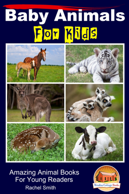 Baby Animals For Kids: Amazing Animal Books For Young Readers - Rachel Smith