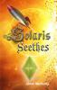 Janet McNulty - Solaris Seethes  artwork