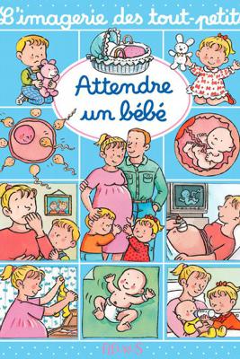 Attendre un bébé - Nathalie Bélineau, Sylvie Michelet & Émilie Beaumont