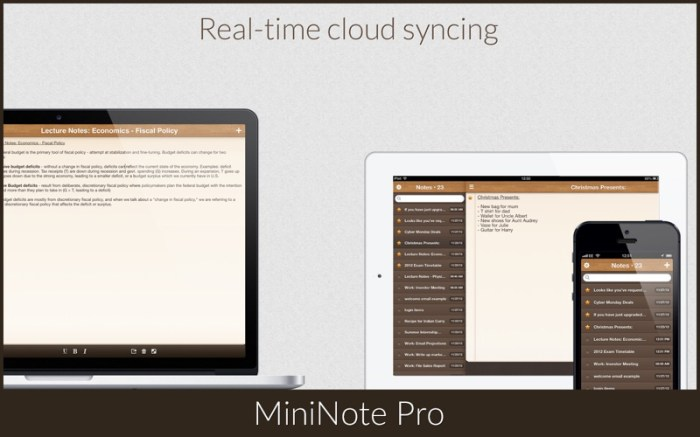 MiniNote Pro Screenshot 4 16seosyn