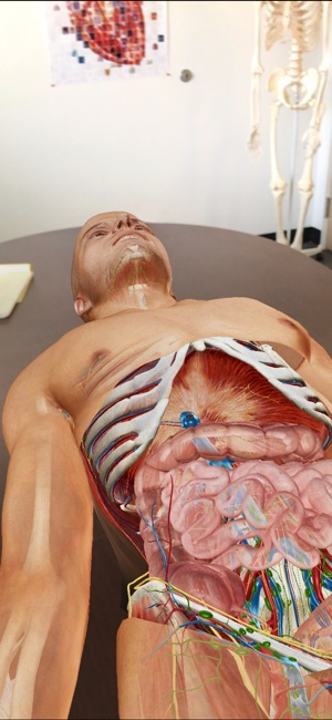 Human Anatomy Atlas 2019 Screenshot