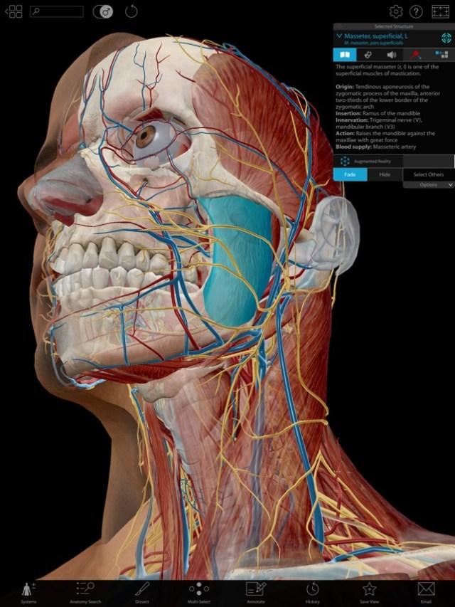 How To Download Human Anatomy Atlas 2019 For Free Ios Ipapanda