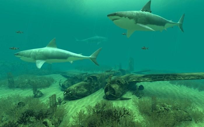 3_Sharks_3D.jpg