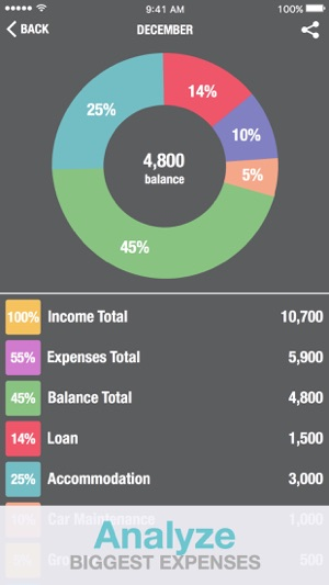 budget calculator personal financial
