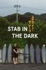 Sam McIntosh - Stab in the Dark  artwork