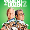 Cheaper By the Dozen 2 - Adam Shankman