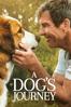Gail Mancuso - A Dog's Journey  artwork