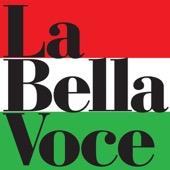 Luciano Pavarotti, Mirella Freni, Royal Philharmonic Orchestra & Sir Colin Davis - La Bella Voce - 20 Italian Hits  artwork