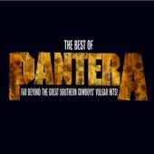 Pantera - The Best of Pantera: Far Beyond the Great Southern Cowboys' Vulgar Hits! (Remastered)  artwork