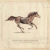 Turnpike Troubadours - A Long Way from Your Heart  artwork
