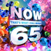 Various Artists - NOW That's What I Call Music, Vol. 65  artwork