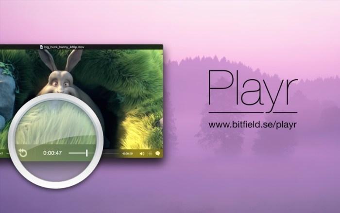 5_Playr.jpg