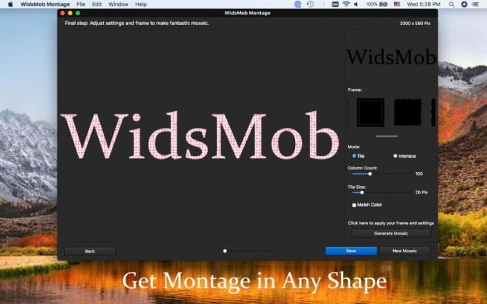 4_WidsMob_Montage.jpg