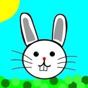 Hoppy Bunny!