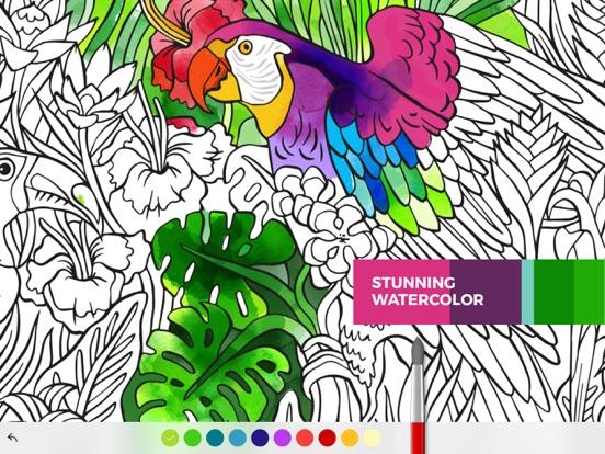 Tayasui Color Screenshot