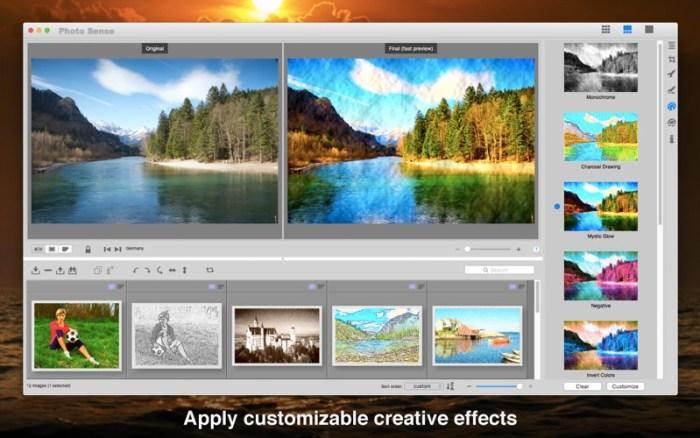 4_Photo_Sense_Bulk_Enhancement.jpg