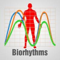 Biorhythm Chart on the App Store