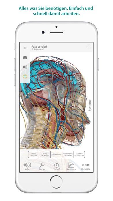 Atlas der menschlichen Anatomie Screenshot