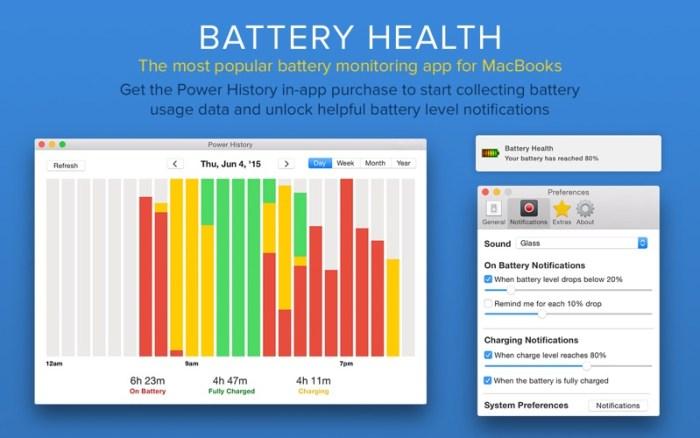 3_Battery_Health_Monitor_Stats.jpg