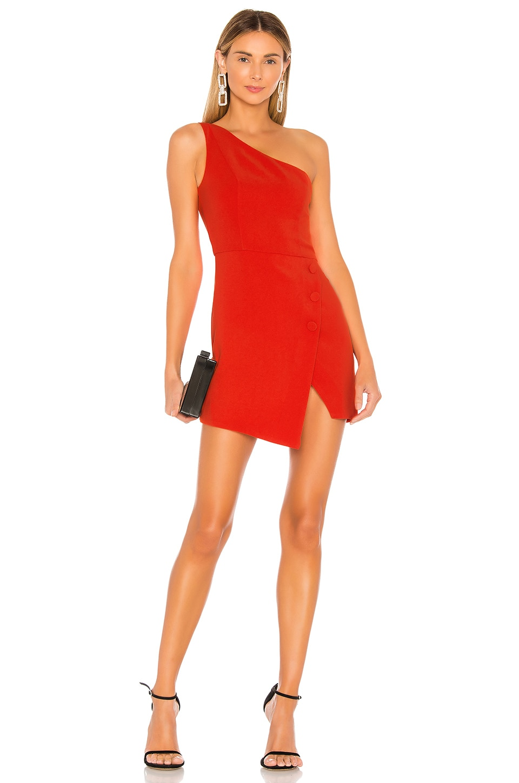 Tere Mini Dress                     NBD 2