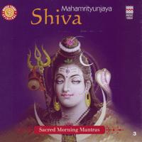 Mahamrityunjaya Mantra Suresh Wadkar