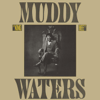 Muddy Waters - King Bee  artwork