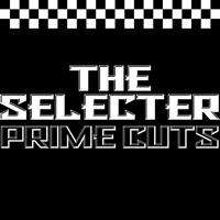 On My Radio (Live) The Selecter