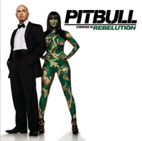 Shut It Down (feat. Akon) Pitbull MP3