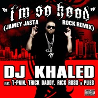 I'm So Hood (Jamey Jasta Remix) - DJ Khaled mp3 download
