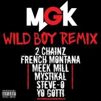 Wild Boy (feat. 2 Chainz, French Montana, Meek Mill, Mystikal, Steve-O & Yo Gotti) [Remix]  - Single - Machine Gun Kelly mp3 download
