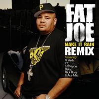 Make It Rain (Remix) [feat. R. Kelly, T.I., Lil' Wayne, Baby, Rick Ross & Ace Mac] Fat Joe