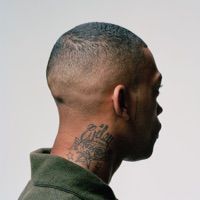 100% Publishing (Bonus Track Version) - Wiley mp3 download