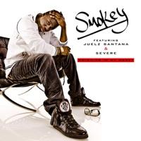 Swimming In My Money (feat. Juelz Santana & Severe) - Single - Smokey mp3 download