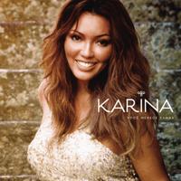 Não Me Compare Karina MP3