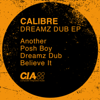 Posh Boy Calibre MP3