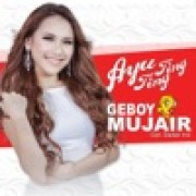 download lagu Ayu Ting Ting Geboy Mujair