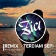 download lagu Nazia Marwiana Terdiam Sepi (Remix)