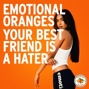 Your Best Friend Is A Hater - Emotional Oranges