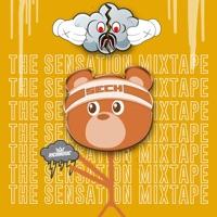 The Sensation Mixtape - Sech mp3 download